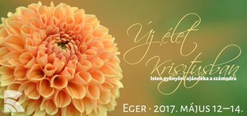 Fotó: CC0 https://www.pexels.com/photo/close-up-of-dahlia-blooming-outdoors-326014