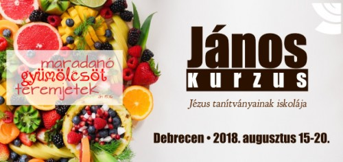 János kurzus Debrecen 2018; kép: (CC) Trang Doan, forrás: https://www.pexels.com/photo/assorted-sliced-fruits-1128678/