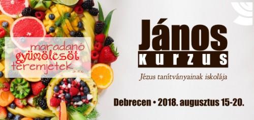 János kurzus Debrecen 2018; kép: (CC) Trang Doan, forrás: https://www.pexels.com/photo/assorted-sliced-fruits-1128678/