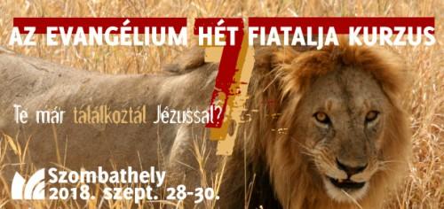 7 fiatal Szombathely banner - kép: (CC) More Blow: Sneaky Lion, forrás: https://www.flickr.com/photos/iandorrington/121278078